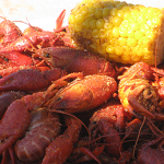 They're small, ugly creatures with beady eyes and little claws. But if you ask some people, there's just nothing better than crawfish. The annual Texas Crawfish Festival  takes place every year in Old Town Spring, the last two weeks of April. As Bill Stamps reports, this year's fun got off to a very wet start.