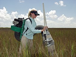 One of Pennings's research team wielding the D-VAC in the field