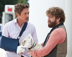 """Film Review: """"Due Date"""""""
