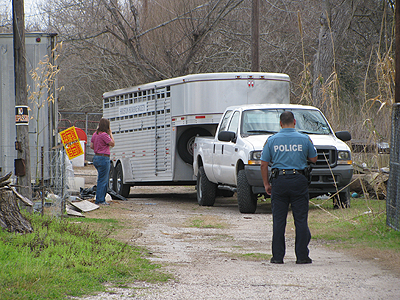 Trucks to remove seized animals