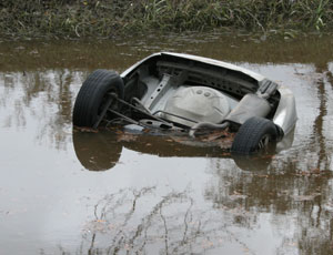 car tail up in bayou