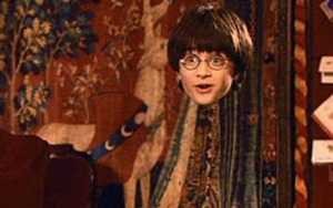 Invisibility Cloak from Harry Potter