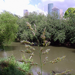 A $205 million dollar makeover of Houston's bayous is about to start thanks to an agreement between the City of Houston and the nonprofit Houston Parks Board.