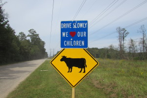 A sign cautions drives to watch out for kids and cows on Hargraves Road in northeast Harris County.