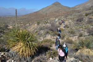 Texas Parks Could Join Your List of New Year's Resolutions