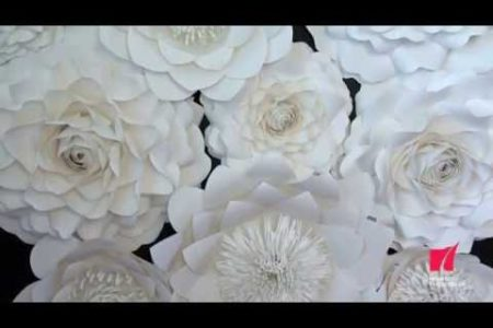 Video: The Beauty Of Paper