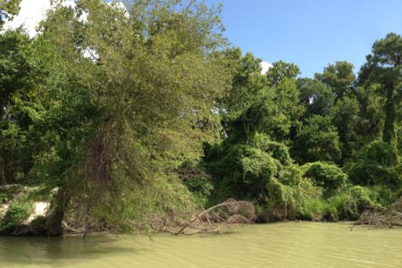 The purchase of the land for the park is being funded with monies from the settlement Harris County reached in 2014 with two of the companies responsible for the pollution in the San Jacinto River waste pits.